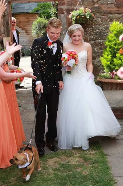 Dog Friendly Venue at Flanesford Weddings